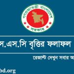 SSC Scholarship Result 2019