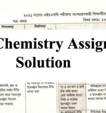 HSC Chemistry Assignment Solution 2021